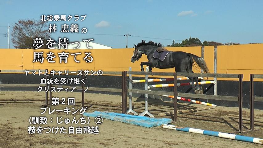 hayashi_tadayoshi_01